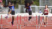oal-hurdles